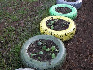 garden-tires-web